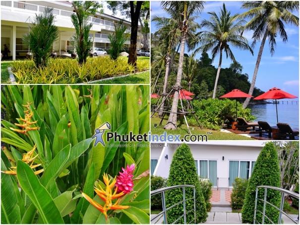 """""""Tropical Garden"""" สีสันเขตร้อนภูเก็ต ในสวนร่มรื่น"""