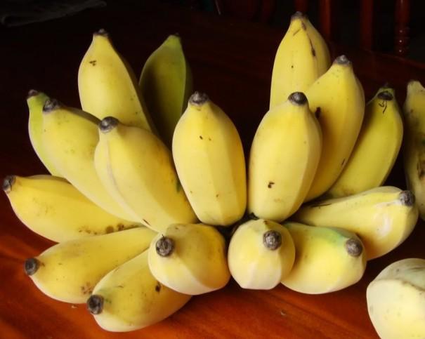 กินกล้วยตอนเช้า มาก ล้น ด้วยประโยชน์