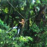 Fly Between Centuries Old Trees @ Flying Hanuman