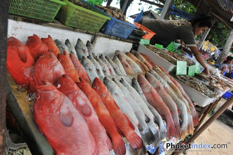 Fresh seafood market at rawai pier phuket live travel for Fresh fish online