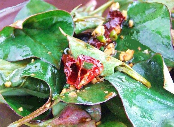 Houttuynia Cordata Leaf Salad