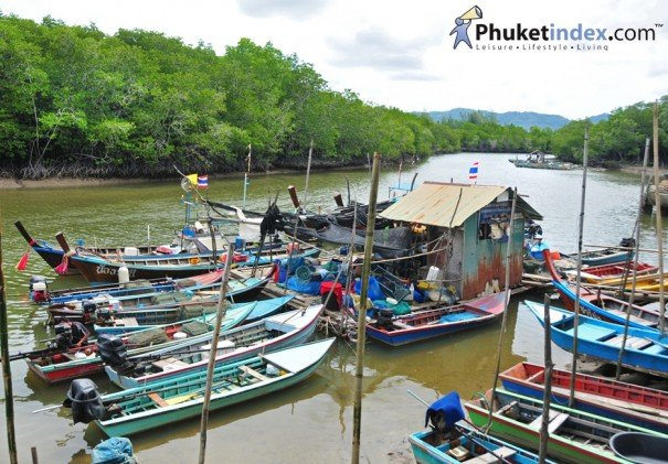Klong mu dong : Paddling Nature in Phuket