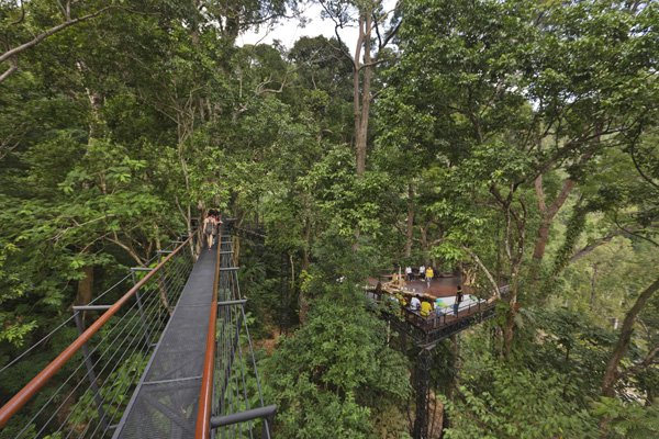 SKY WALK WITH LONGEST TREE-TO-TREE SKY BRIDGE IN THAILAND