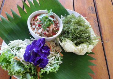 Food Recipes: Sea Grapes Spicy Salad