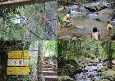 Local Guide: TON-SAI WATERFALL PHUKET & BANG-PAE WATERFALL PHUKET